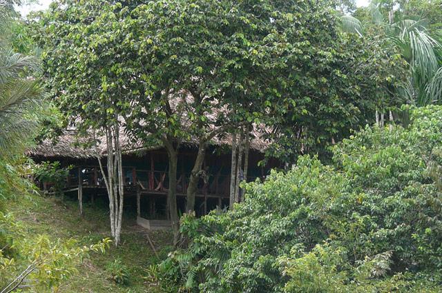 Camp im Amazonas