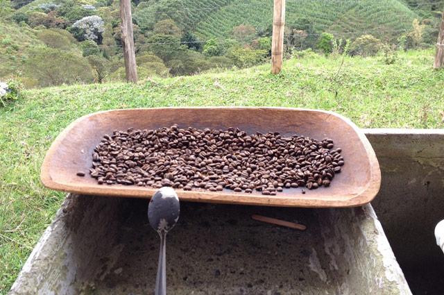 Kaffee aus der eigenen Produktion