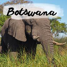 Botswana, puriy