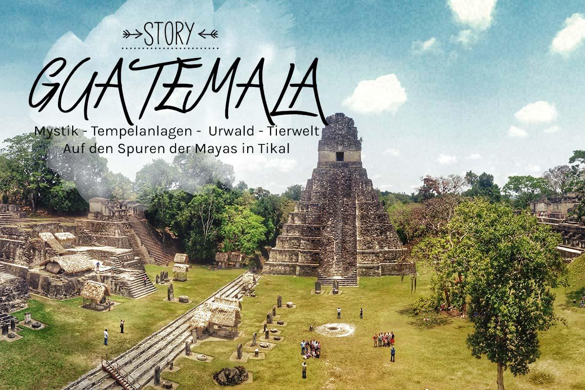 Tikal, Guatemala, puriy