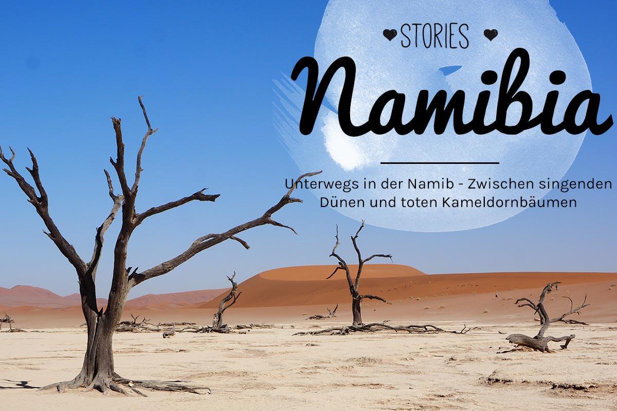 Namib, Namibia, Reiseblogger