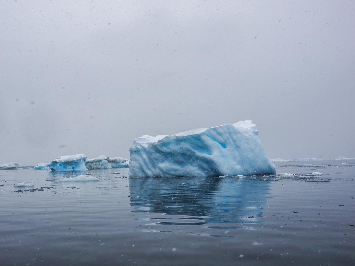 Eisberg im Antarctic-Sund