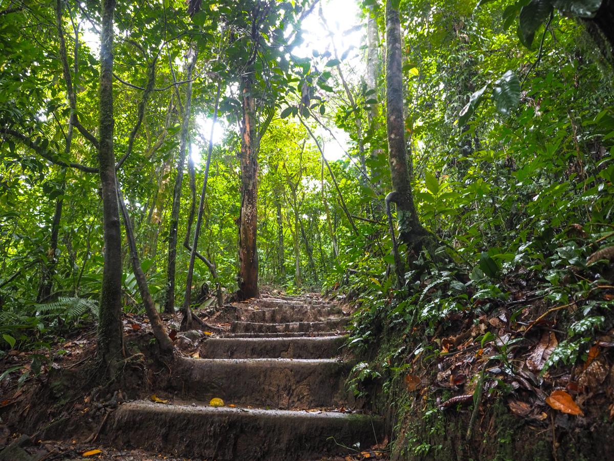 Costa-Rica, Tenorio Volcano National Park, Rio Celeste