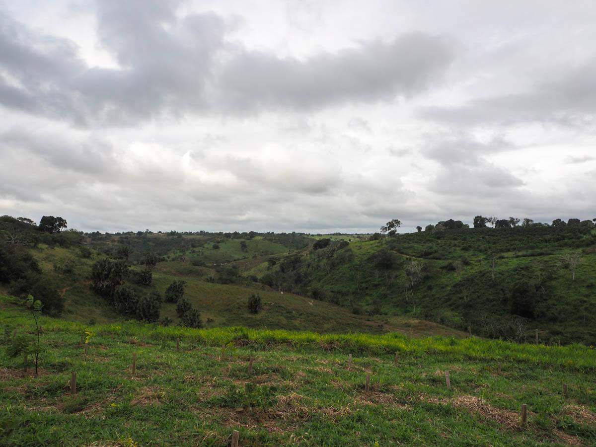Dannemann, Sao Felix, Brasilien