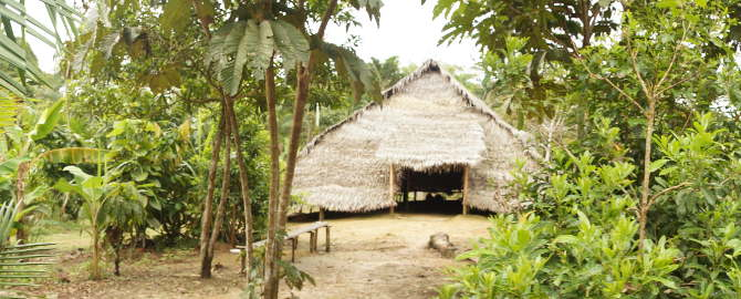 Amazonas Indianerhütte
