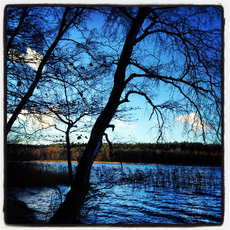 Blue Sky & Krummer See