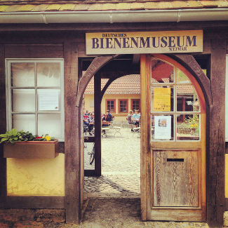 Bienenmuseum