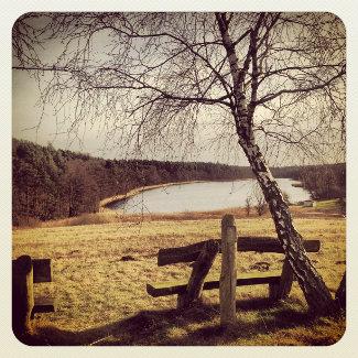Havelquelle Bornsee
