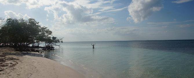 Kuba Strand, CayoJutias