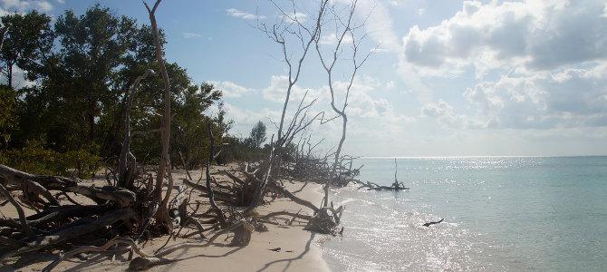 am Strand von Cayo Jutias