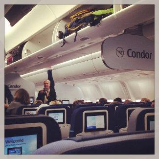 In der Economy Class von Condor