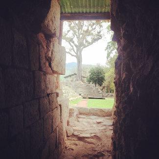 Blick durch altes Gemäuer, Copan Honduras