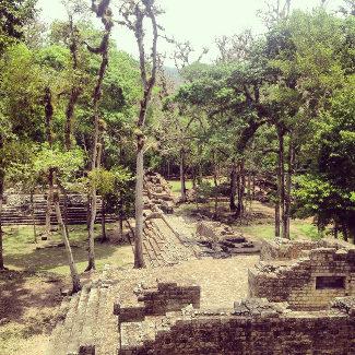 Blick über den bewachsenen Teil der Ausgrabungsstätte, Copan Honduras