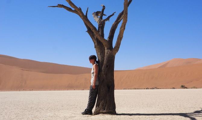 Erholung unter einem toten Kameldornbaum
