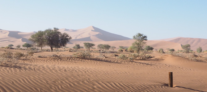 Vorbeiziehende Dünenlandschaft
