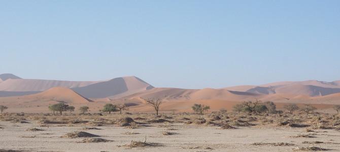 Dünenlandschaft im Namib-Naukluft-NP