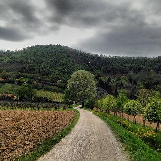 Landschaft nahe Abano Terme auf dem R2
