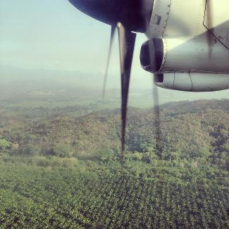 Landung über Bananenfelder