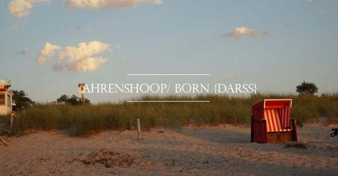 Header_Ahrenshoop_darss