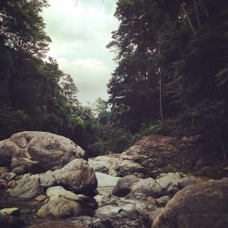 Las Pilas Trail im Pico Bonito NP