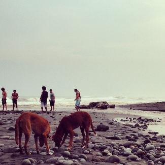 An der Mündung des El Tunco