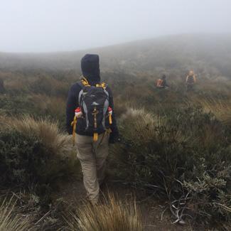 Wanderung durch Paramo-Gräser und Nebel