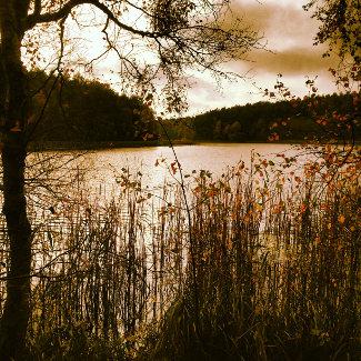 Krummer See im Herbst
