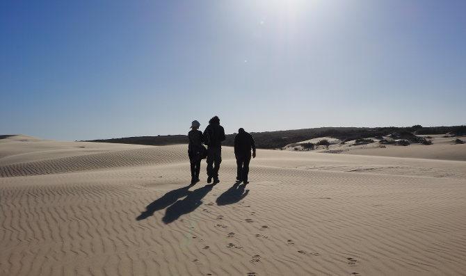 In der Dünenlandschaft vom West Coast National Park