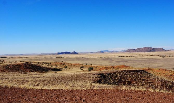 Blick über die bewachsene Wüste