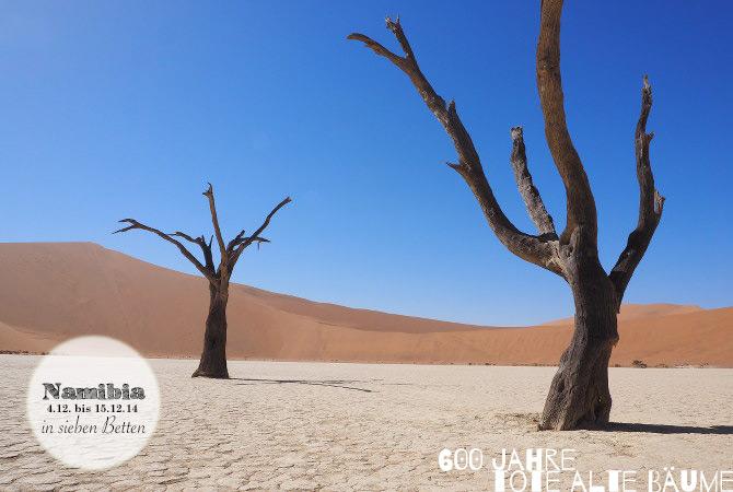 Namibia Dezember 2015, puriy.de