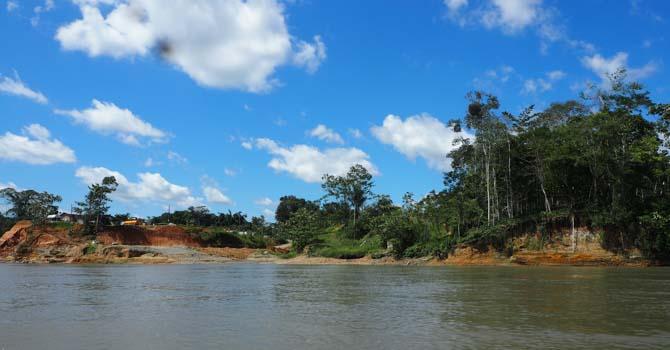 Am Ufer des Rio Napo