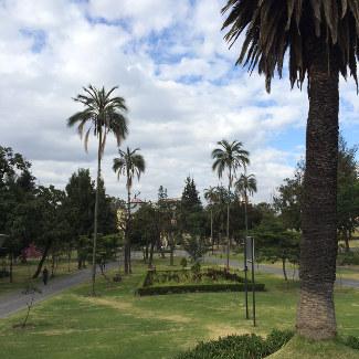 Quito_Parque_325