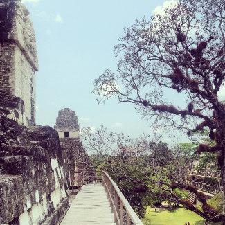 Auf dem Tempel 2 mit Blick rüber zu Tempel 1, Tikal