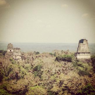 Blick über Tikal von Tempel 4