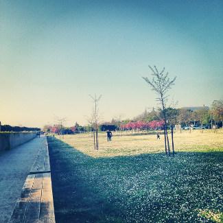 Parkanlage neben Theoderichs Mausoleum