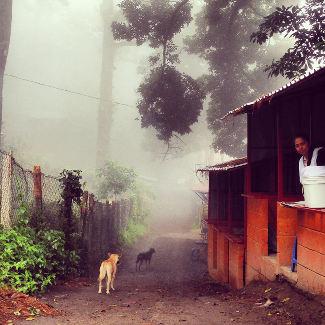 Der Weg auf dem Boqueron