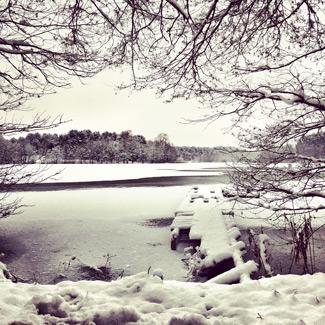 Schneelandschaft vor Silvester im Müritz NP