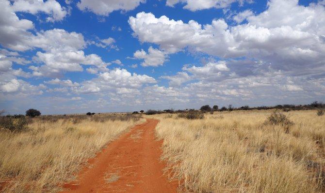 Unser Weg beim Walk durch die Kalahari