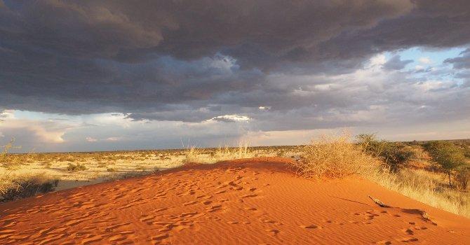 Sunset über der Kalahari während im Osten ein Gewitter leuchtet