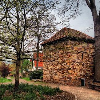 Stadtmauer hinter der Predigerkirche