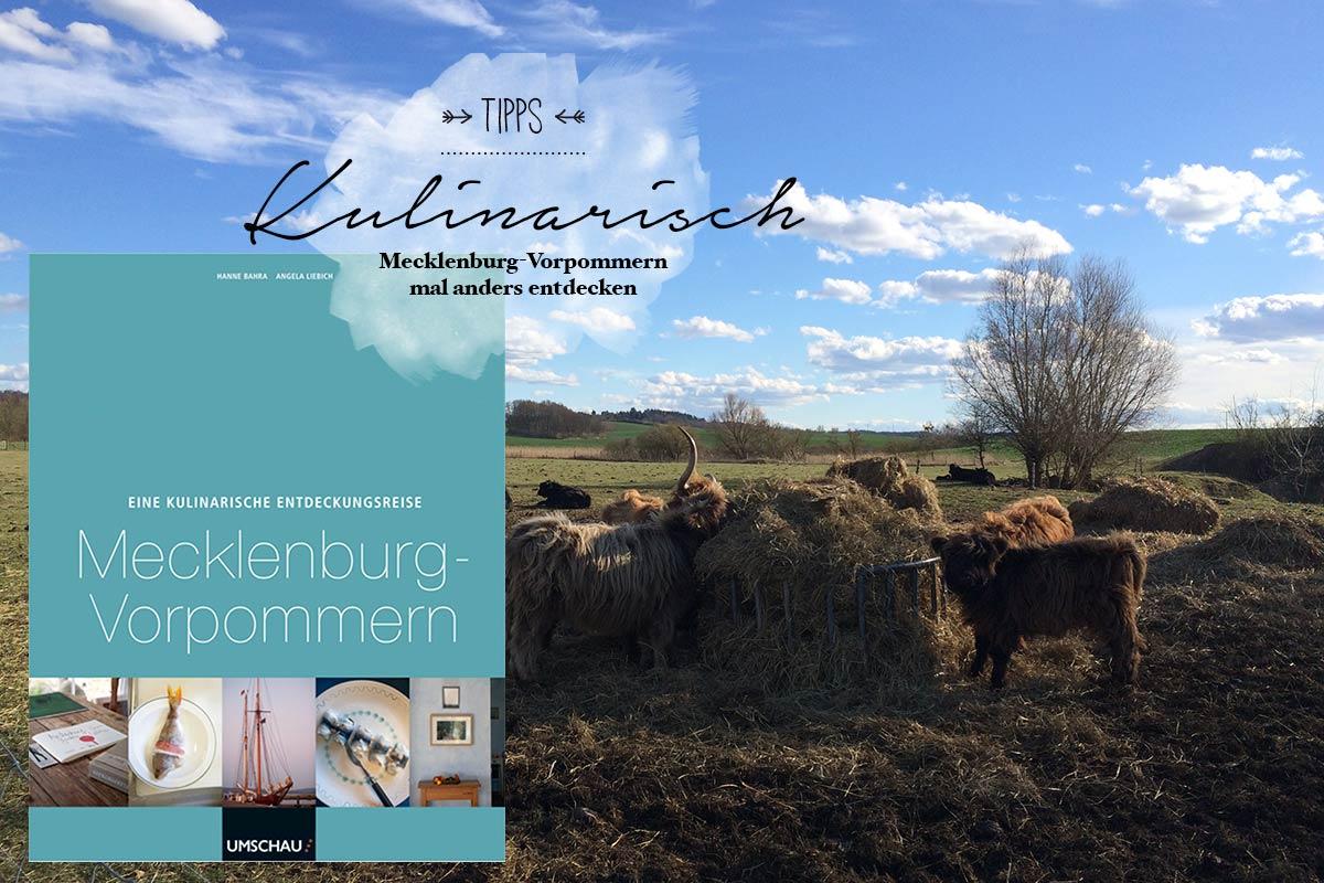 puriy, reiseblog, literaturtipp mecklenburg