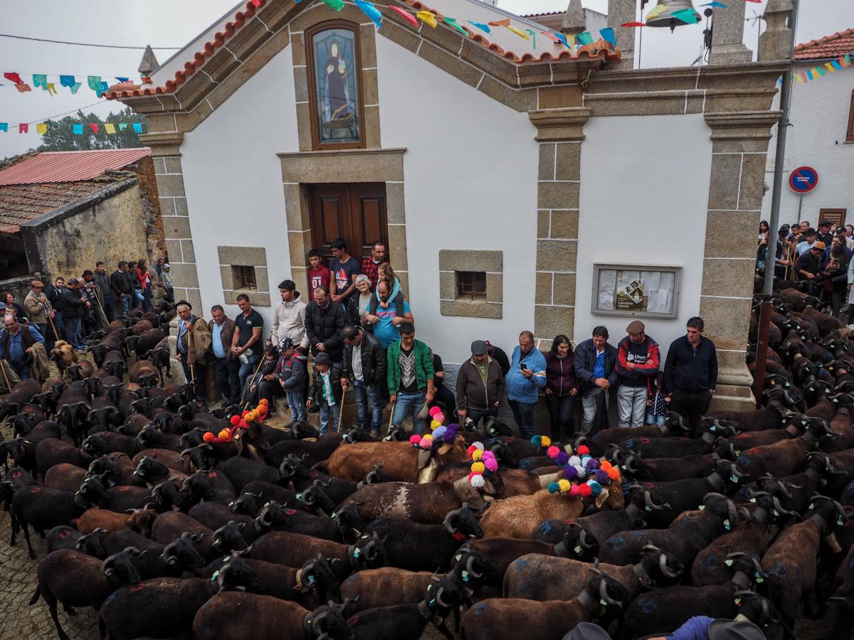 Serra da Estrela, Center of Portugal