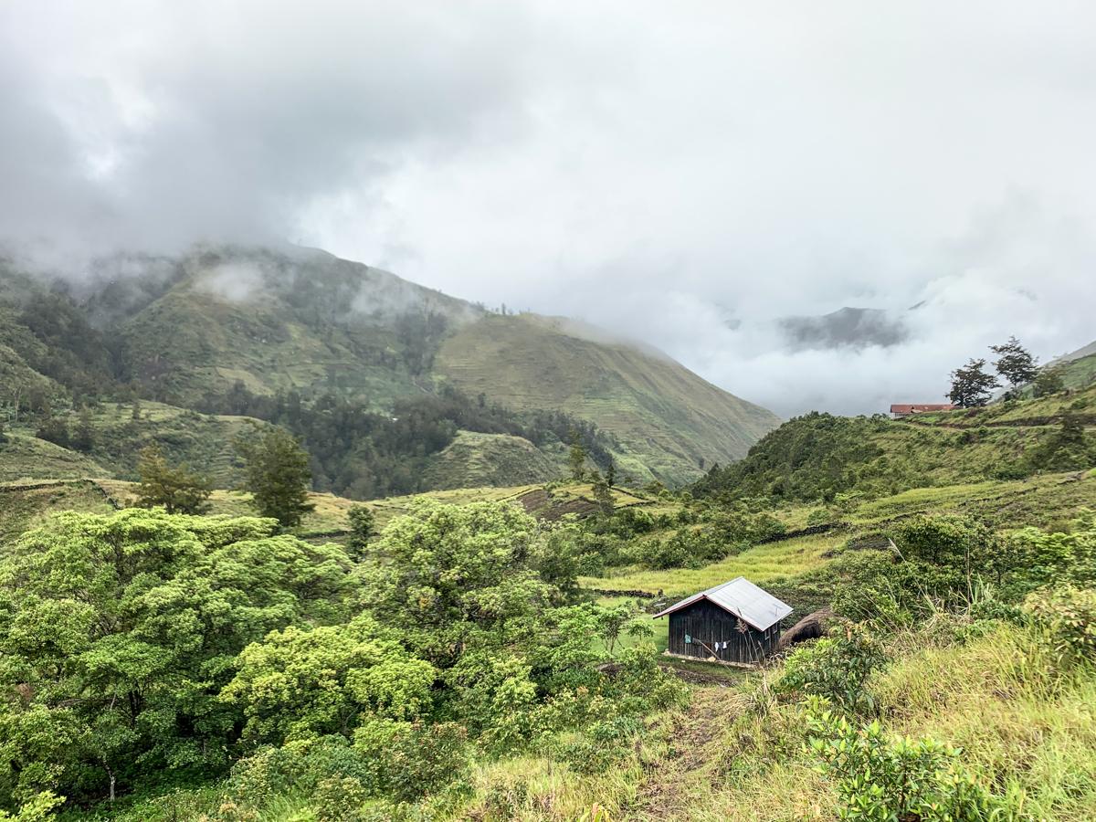 Papua2