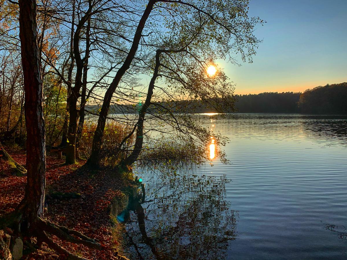 Nov-Boetzsee