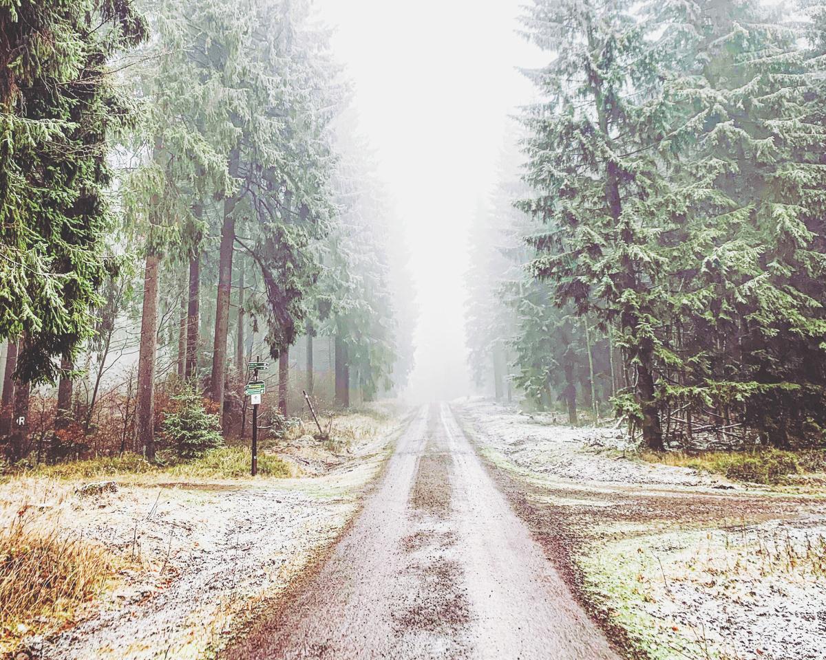 Nov-Rennsteig-Schnee