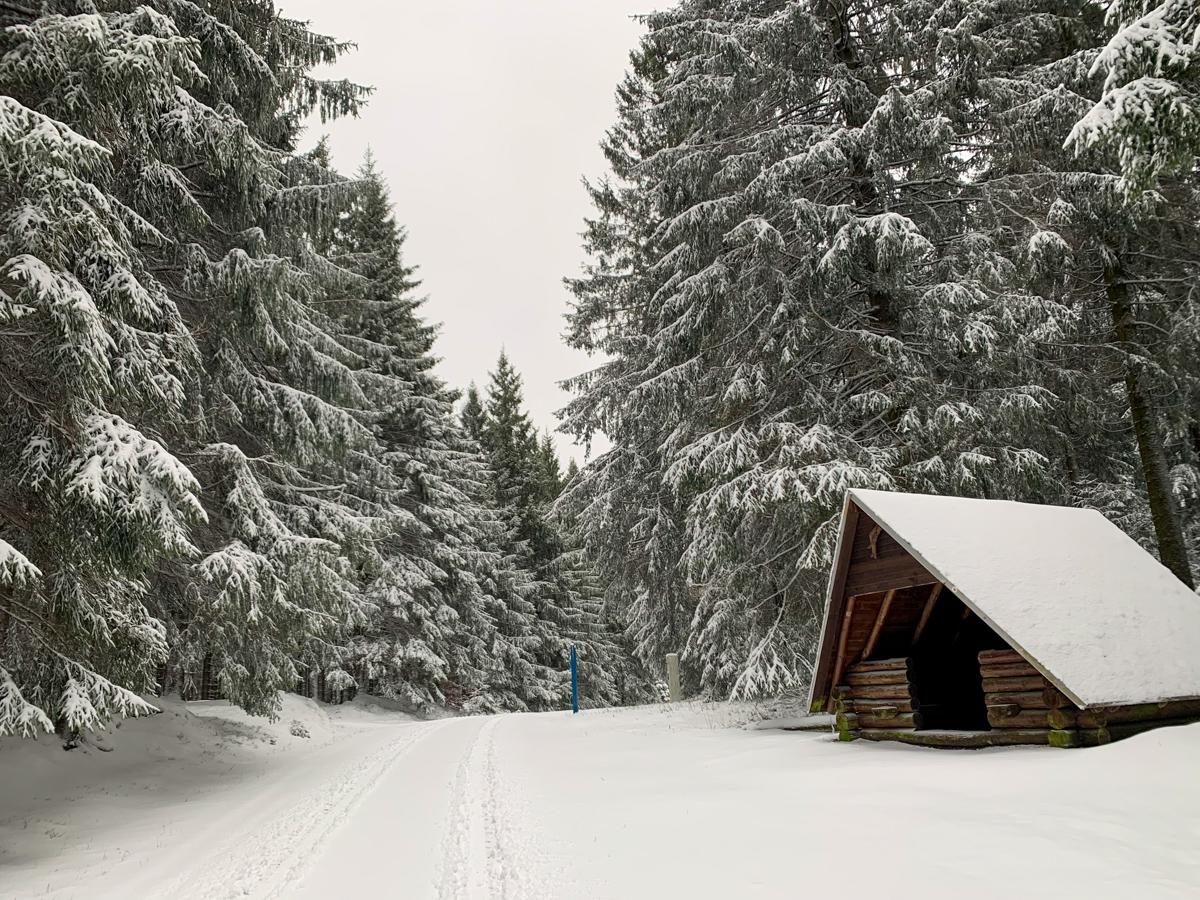 Rennsteig-Schnee
